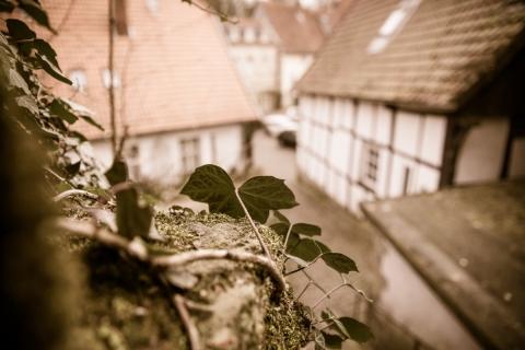 tecklenburg-20160403-007