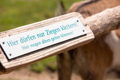 Naturzoo-Rheine_064